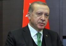 Эрдоган пригрозил ЕС после критики военной операции в Сирии