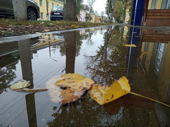 Погода на пятницу в Туле: дождь и ветер