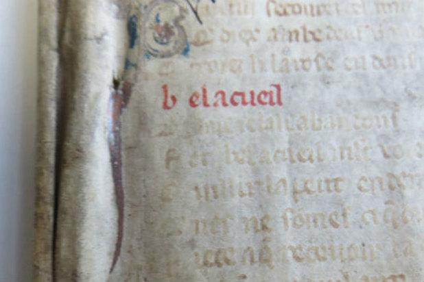Обнаружена древнейшая страница эротической рукописи XIII века