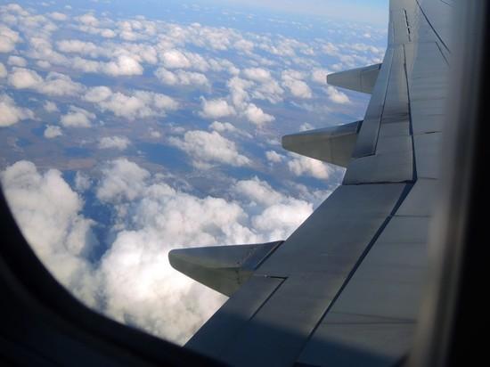 Самолет из Москвы экстренно сел в Ростове из-за пистолета в ручной клади