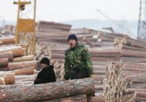 Китайцы из Боготола выплатят штраф в 1 млн рублей за взятку сотруднику ФСБ
