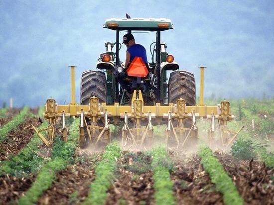 Россельхозбанк создаст цифровую экосистему для фермеров