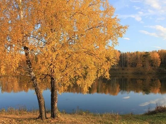 Зимы не будет: «бабье лето» в Новосибирске продлили на выходные