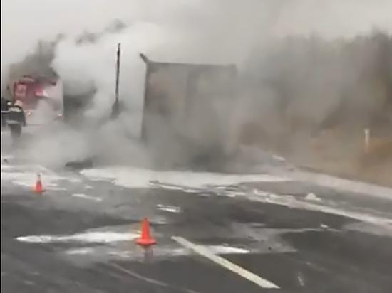 На трассе в Ленобласти дотла сгорела фура