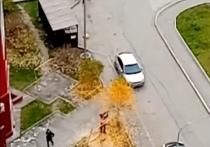 Житель Нового Уренгоя решил «ускорить осенний листопад»