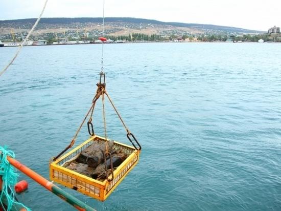 В Крыму с затопленного парохода подняли более 6,5 тыс. боеприпасов