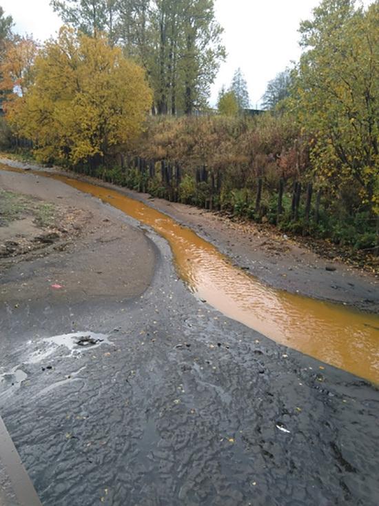В ставшей ярко-рыжей реке Святке обнаружили сточные отходы