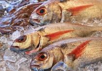 Изучать рыбу по зубам и принюхиваться к жабрам придется дотошным покупателям