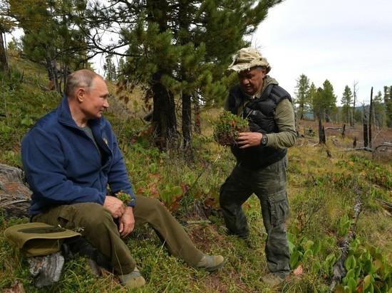 Песков объяснил, почему Путин всегда отдыхает в России