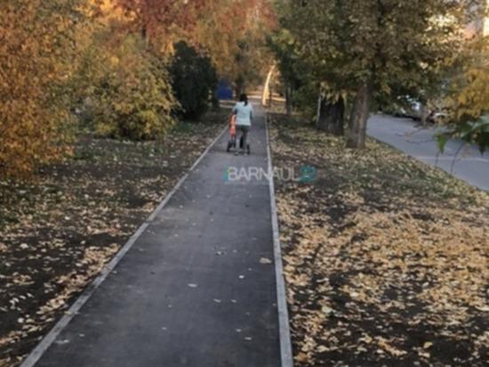 Единственную велодорожку в Барнауле заполонили собачники и мамы с колясками