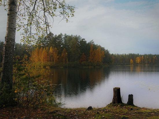 Сегодня в Архангельской области станет чуть мокрее и чуть прохладнее
