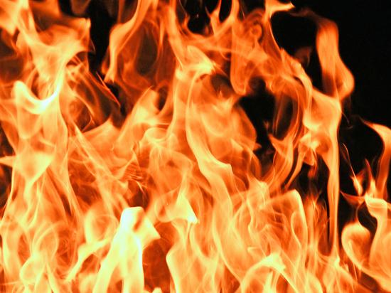 В Алтайском крае участились пожары из-за теплой погоды