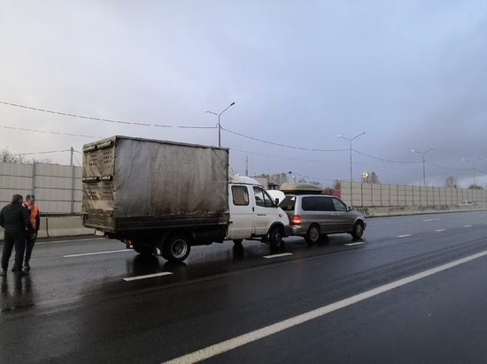 Ярославский водитель пожалел собачку на трассе М8 и спровоцировал ДТП