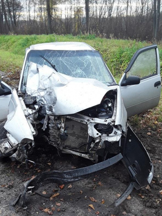 Уснувший водитель врезался в столб на трассе в Чувашии, пострадали трое