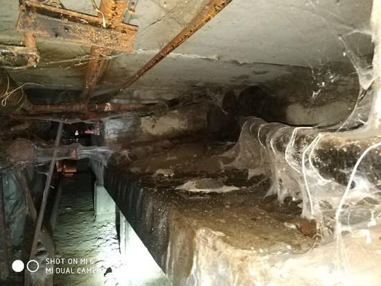 Житель Надыма сообщил о «плачущем по капремонту» подвале в доме