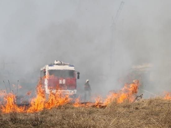 В Алтайском крае за последние сутки зафиксировано 73 случая возгорания сухой травы