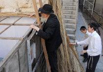 На этой неделе отмечается Суккот, один из центральных праздников в иудаизме