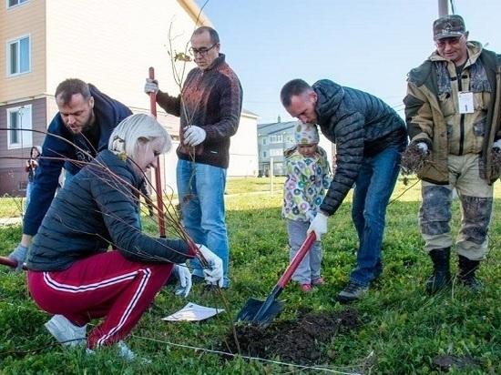 Новотроицкое присоединилось к акции «Живи, лес!»