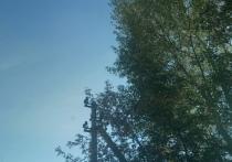 В Орске пытаются замять дело, заведенное на электрические сети