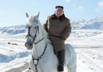 Опубликованы фото Ким Чен Ына верхом на белом коне
