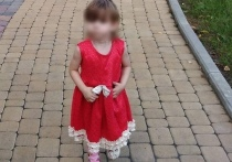 Ранее сообщалось, что платье загорелось из-за баловства с зажигалкой девятилетней подруги пострадавшей