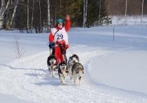 «На тренировки можно будет приходить как со своими собаками (не обязательно ездовых пород), так и без, - рассказала автор проекта Майя Лузянина