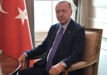 Президент Турции Реджеп Тайип Эрдоган продолжает отклонять призывы США к прекращению огня на севере Сирии, заявляя, что его не беспокоят ни американские санкции, ни продвижение сирийских правительственных войск к турецкой границе