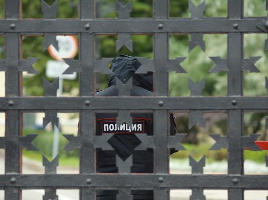 Семья конструктора Ростислава Алексеева провела пикет в Кремле