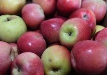 10 продуктов, обеспечивающих стабильный уровень сахара в крови