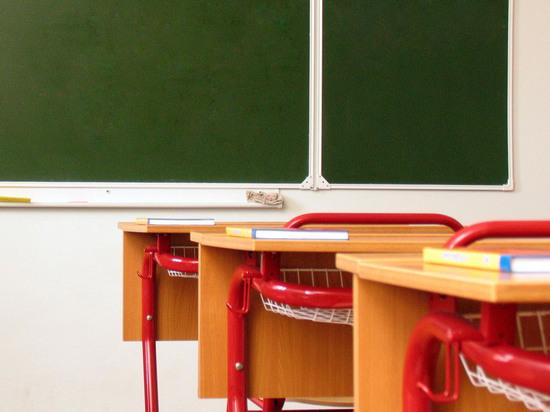 Детектив рассказал, как разоблачали учительницу, избивавшую детей: «58 эпизодов»