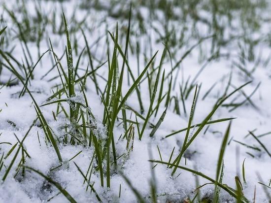 Ночью в Красноярске ожидается снег