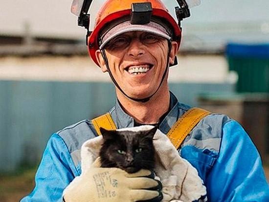 В Камне-на-Оби успешно провели операцию по спасению кота