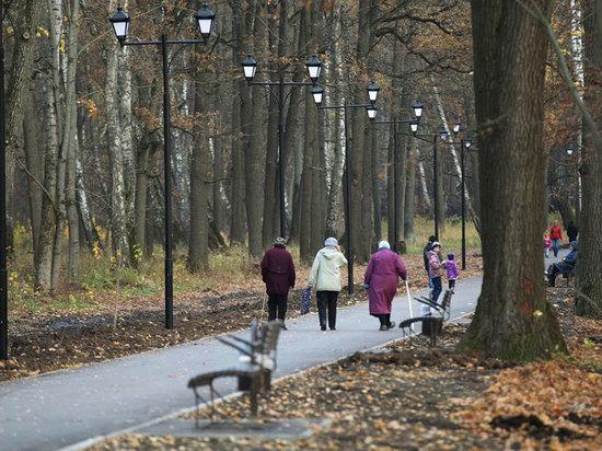 Болохово получит 10 миллионов на городской парк