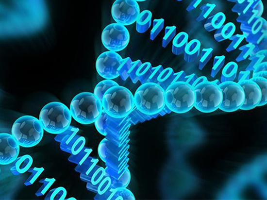 С помощью ДНК хотят выявить фиктивных членов семьи