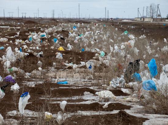 Россиянам запретят пользоваться пластиковыми пакетами
