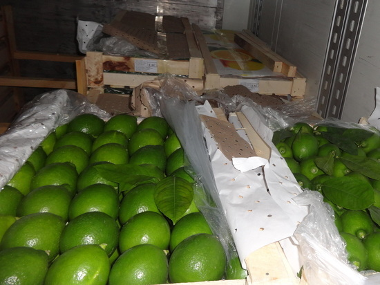 В Оренбуржье пытались ввезти почти 400 тысяч килограмм опасного провианта