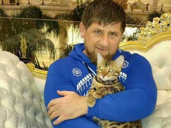 Кадыров заявил, что Чечня защитит Россию от террористов из Сирии