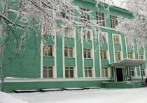 Плесецкий район Архангельской области выбирает уездного предводителя
