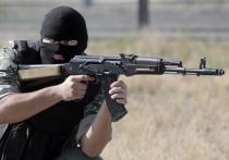 """В """"Азове"""" назвали """"информационной атакой"""" призыв признать нацбатальон террористической организацией"""