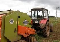 Пермские МФЦ начали прием заявок от сельхозпроизводителей на получение субсидий