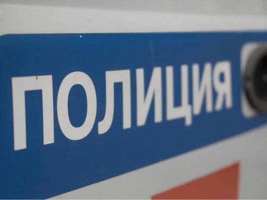 Старшеклассник надругался над сверстником в Петербурге