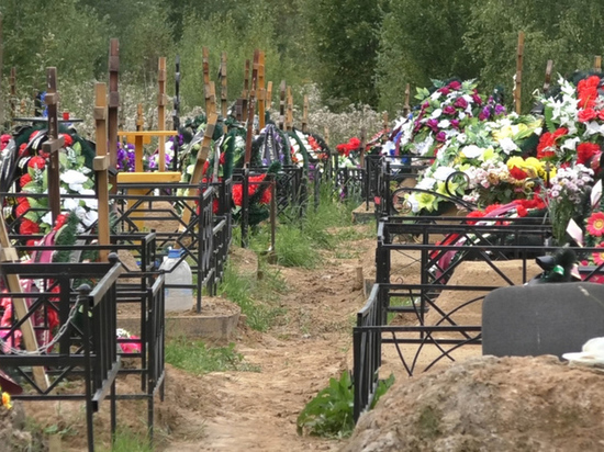 Покойников придется класть плотнее: депутаты муниципалитета обошли ярославские погосты