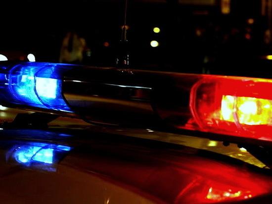 На трассе М-4 «Дон» в Воронежской области пешехода сбили два автобуса