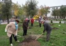 Ветераны района Калмыкии посадили деревья
