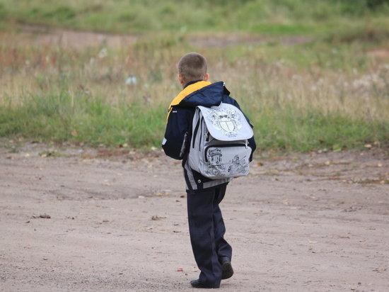 Хабаровчан просят сообщать об опасных участках на пути детей в школу