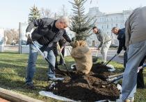 В Воронеже подвели итоги общерегионального субботника