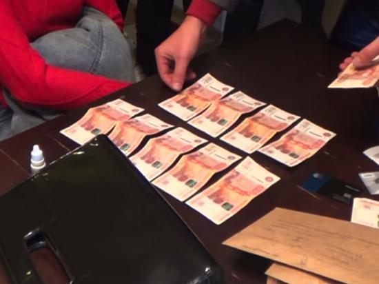 Задержан еще один фигурант «дела Тюриной»: получил взятку в 150 тыс рублей