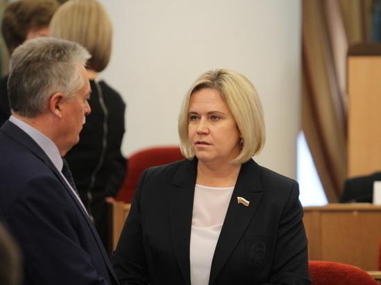 Фракция ЛДПР раскритиковала бюджетный процесс в Оренбургской области