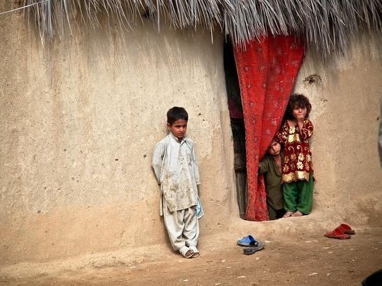 """Нобелевский лауреат предложил """"доказанный и эффективный"""" способ борьбы с бедностью"""