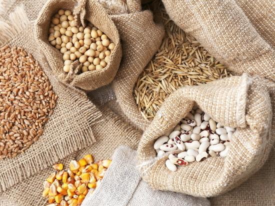 Создать семенной фонд в Забайкалье пока нереально - Минсельхоз